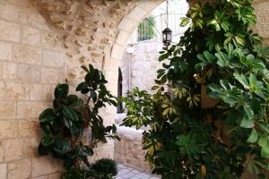 Малая Гефсимания. Малые монастыри внутри стен Старого Города