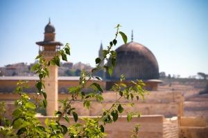 Мечеть Эль Акса. Что, где, когда?